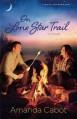 On Lone Star Trail: A Novel (Texas Crossroads) - Amanda Cabot