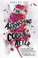 The Astonishing Color of After - Emily X.R. Pan