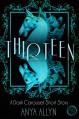 Thirteen: A Dark Carousel Short Story (The Dark Carousel Book 0) - Anya Allyn