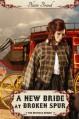 A New Bride At Broken Spur (The Montana Brides) - Blaire Brand