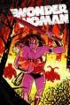 Wonder Woman, Vol. 3: Iron - Tony Aikins, Amilcar Pinna, Cliff Chiang, Brian Azzarello, Dan Green