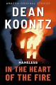 In the Heart of the Fire - Dean Koontz