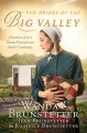 The Brides of the Big Valley: 3 Romances from a Unique Pennsylvania Amish Community - Richelle Brunstetter, Jean Brunstetter, Wanda E. Brunstetter