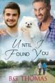 Until I Found You - B.G. Thomas