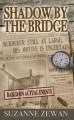 Shadow by the Bridge - Suzanne Zewan