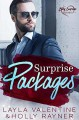 Surprise Packages - A Royal Twins Romance (Baby Surprises #6) - Holly Rayner, Layla Valentine