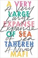 A Very Large Expanse of Sea - Tehereh Mafi